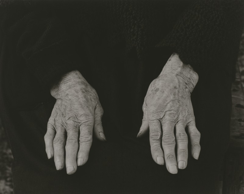 Hands by Paul Strand